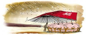 四川泸州:保险让生猪养殖重拾信心