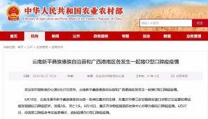 警惕!云南、广西各发生一起猪O型口蹄疫疫情