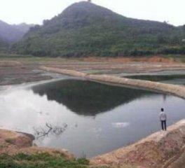 江西吉安一猪场场址还未定便被投诉污染环境了!