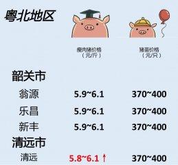 猪价 | 7月4日 广东生猪行情动态一览!