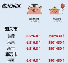 猪价 | 7月12日 广东生猪行情动态一览!