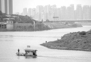 湖南:浏阳河流域500-1000米范围内全面退出畜禽养殖