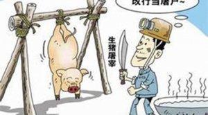 农业农村部评查生猪屠宰行政处罚案卷