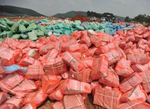 惊悚!上半年广西南宁查办走私生猪10万头、冻品5199吨!