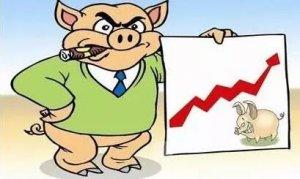 多地猪价直涨4毛,养殖户高兴之余是否担心还能涨多久?