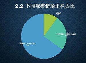 中国生猪60%靠散户!得家庭猪场者得天下!