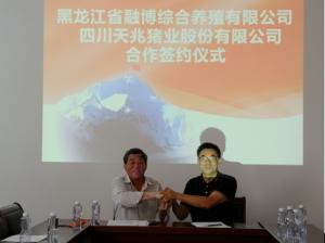 天兆猪业与黑龙江省融博综合养殖合作项目