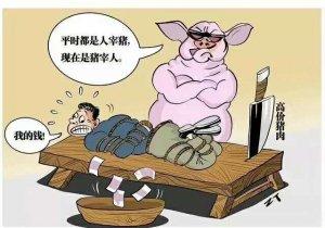 9月非洲猪瘟频发对猪价影响几何?明年是否乐观?