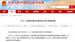广东、云南调往重庆的猪发生O型口蹄疫疫情