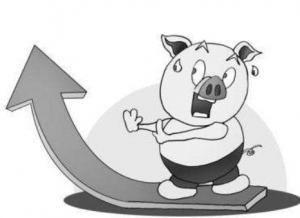 养猪大企也不可对非洲猪瘟疫情掉以轻心