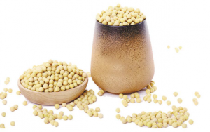 我国大豆产业发展还需夯实基石