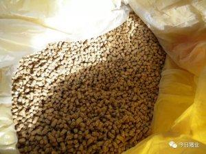 自配料你知道豆粕、玉米该加多少吗?猪饲料最佳配方比例都在这里!
