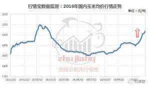 10月多地玉米突破1元/斤!养殖户啥时买、卖最合适?