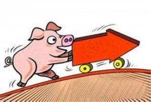 14家农业公司预计今年净利超亿元,猪价拐点将至!