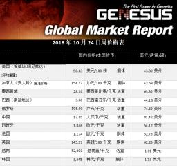 全球市场报告-东南亚(2018.11)