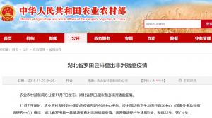 湖北省罗田县排查出非洲猪瘟疫情!