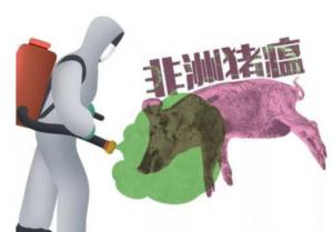 防控非洲猪瘟!五省做法迥异但本质一样……