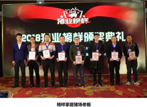猪易传媒2018 猪业榜样颁奖典礼 见证榜样璀璨养猪业
