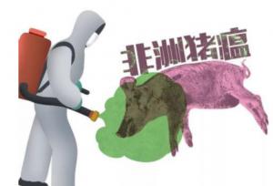 河北:将非洲猪瘟防控纳入省委重点工作大督查范围