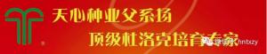 """热烈祝贺天心种业荣获农业农村部""""猪伪狂犬病净化示范场""""荣誉称号!"""