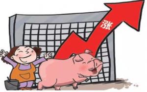 猪价上浮第七天,这8省猪价已破8,剩下地区什么时候跟进?