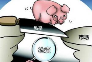 内蒙古:查获跨省无检疫生猪肉600余公斤