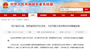 四川、陕西、北京排查出非洲猪瘟疫情