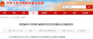 陕西省神木市和贵州省贵阳市白云区排查出