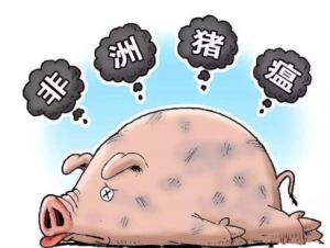 猪价踌躇不前,难道真