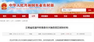 云南省昭通市镇雄县非洲猪瘟疫区解除封锁
