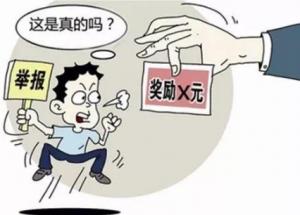 广东江门:举报泔水养猪可获500元/次人奖励