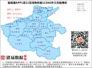 猪易通app19年1月11日河南猪价走势-稳中伴涨