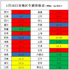 """46.6%地区猪价在""""6""""以上  未来降价空间"""