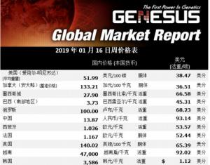 全球市场报告 美国区(2019.1.16)