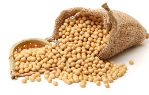 大豆振兴计划即将发布,今年大豆或扩产1000亩