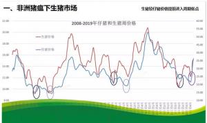 朱增勇:非洲猪瘟下的中国猪肉市场展望