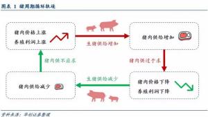 从猪周期指标体系看年内猪价涨幅!
