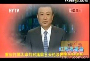大审判猪霸王天伦涉黑案公判