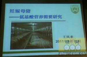 王凤来:妊娠母猪的氨基酸营养需要研究