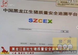 黑龙江首批生猪质量安全追溯试点建立