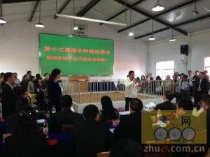 第十三届武汉种猪拍卖