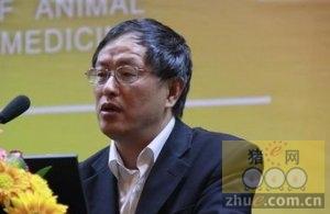 印遇龙:湖南生猪产业技术联盟浪得虚名