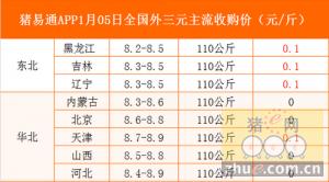 猪易通app01月05日各地外三元价格一览图