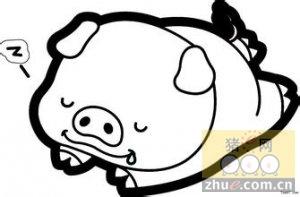 为今天的猪价拍个手,期待明天会更好!