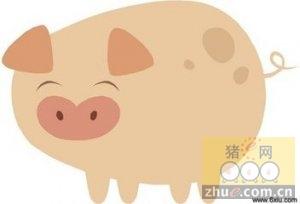 1月13日安徽省猪市行情信息