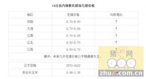 1月14日辽宁省猪评:未来几天毛猪价格以平稳微涨为主