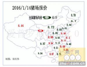 【行情】毛猪价格东北基本上稳住,下跌冲击正在从东北向南方蔓延