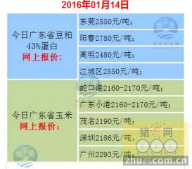 牧之源-广东省1月14日猪价
