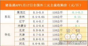 猪易通app01月17日各地外三元价格一览图