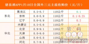猪易通app1月18日各地外三元价格一览表